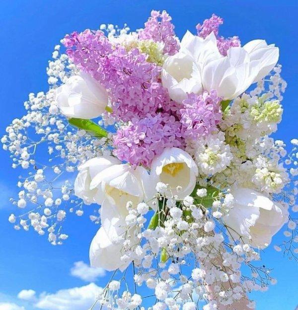 Merci pour ces beaux bouquets ....