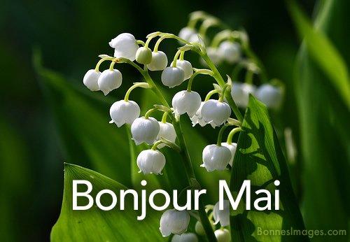 Bon 1er Mai ....