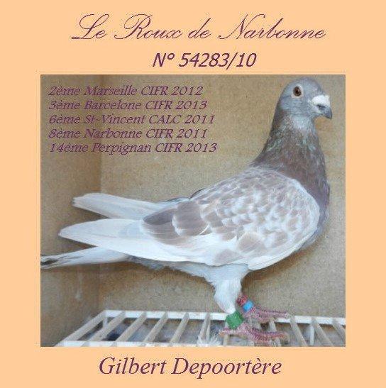"""Le """" Roux de Narbonne """" de Gilbert DEPOORTERE"""