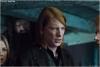 William Weasley