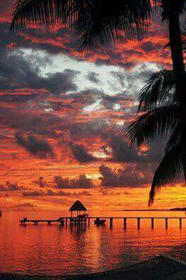 Beautiful sunset in Tahiti........