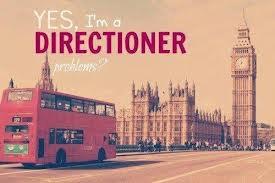 Directioner Forever ∞