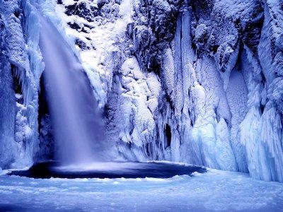 Pour fêter le retour normal de l'âpre hiver- Olivier Calemard de la fayette!