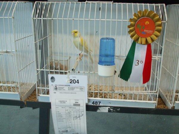 Campionato Italiano Rimini 2012