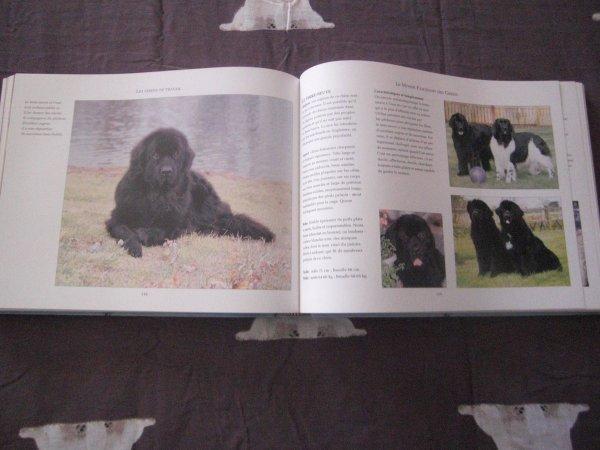 Mon livre le monde fascinant des chiens