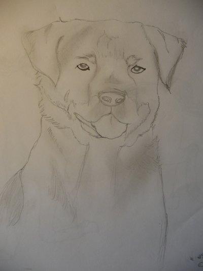 Ma passion, mon plaisir des mauvais jours ... le dessin !