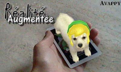 ♦ Nintendogs + Cats ♦ Tutoriel #1 - La Réalité Augmentée !