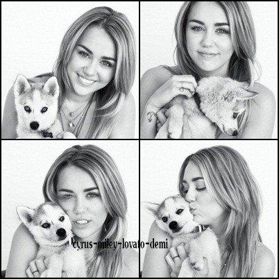 Nouveau Photoshoot De Miley
