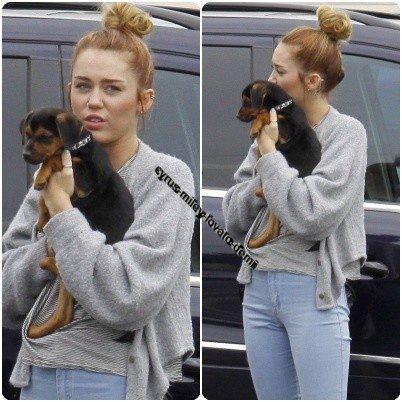 11.05.12 : Miley et Liam au East Valley , Animal Care Center .