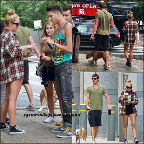Miley & Liam promènent Ziggy le 29 juillet , Philadelphie .