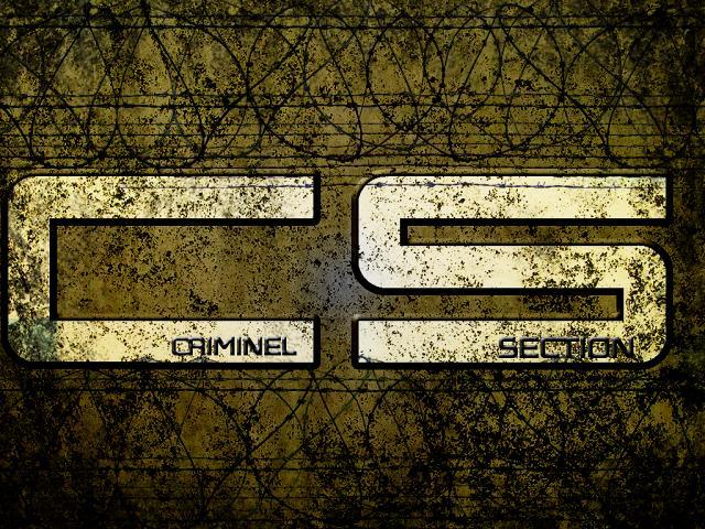 CRIMINELLE-SECTION