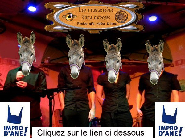 Impro d'âne. 09.12.2011.