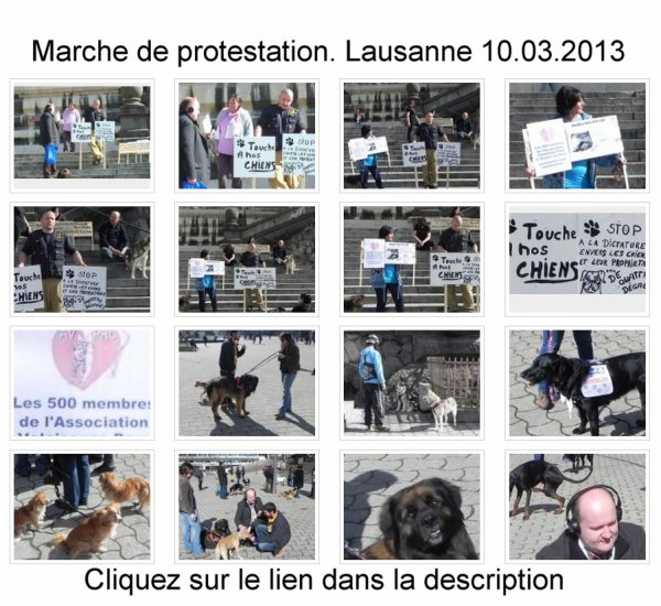 Marche de protestation.