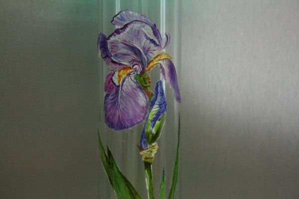 Un iris que j'ai peint , il etait dans mon jardin !