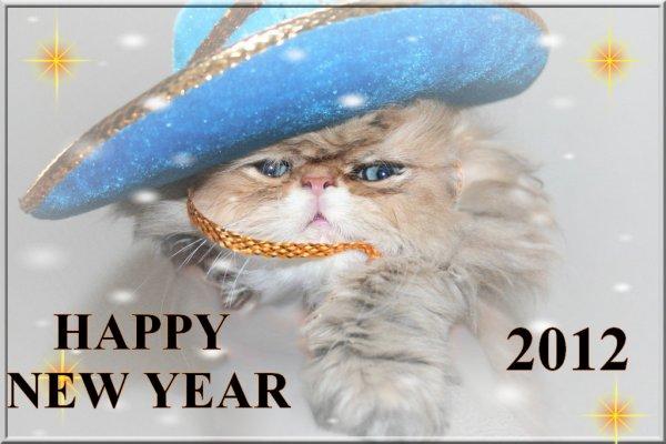 la chatterie du doulieu vous présente ses voeux 2012