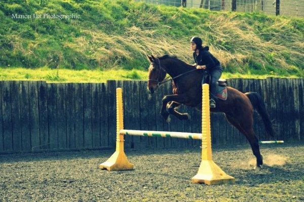 """""""Balance ton coeur par dessus l'obstacle et ton cheval te suivra"""" : Tao."""