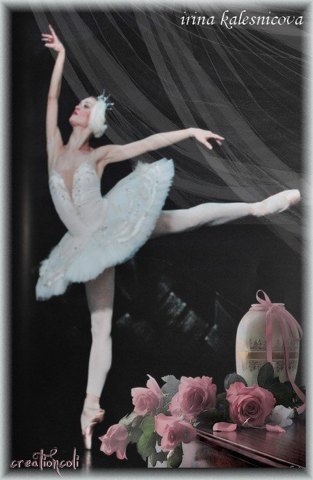 Irina  Kalesmicova