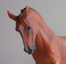 Photo de x-Amazing-Schleich