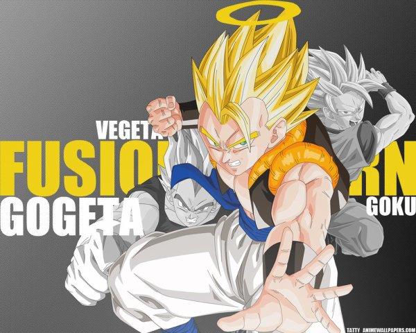 Fusion Goku Végéta  フュージョン悟空ベジータ Fu~yūjon Gokū bejīta