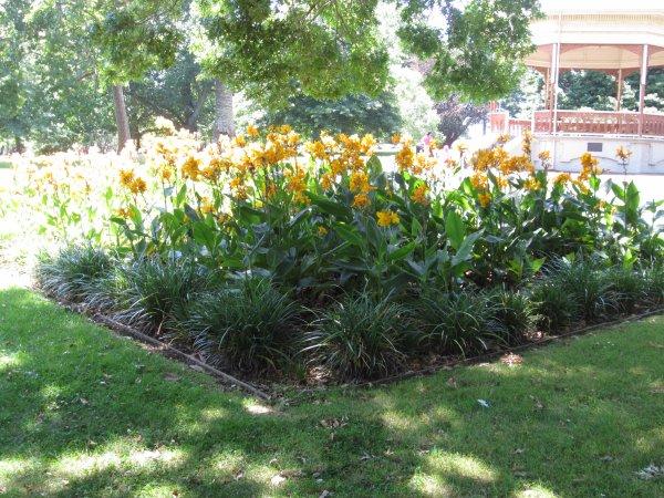 Le jardin botanique d 39 auckland blog de bouju in new zealand for Amis jardin botanique