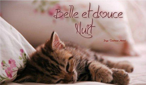 Bonne soirée et douce nuit