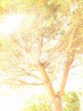 Photo de K-SSiiiiE