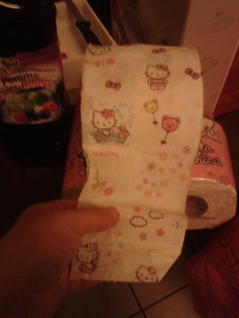 Le cadeaux de Noël de la part de ma soeur pour inover mes nouveaux toilettes...