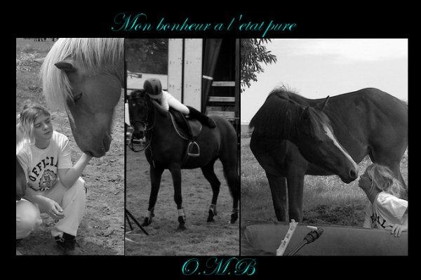 Juste une cavalière qui aime plus que tout ces chevaux , ils sont tout pour elle  ♥
