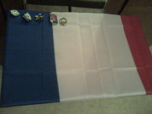 ma petit collection de pucelle et insigne militaire 2