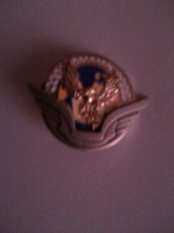ma petit collection de pucelle et insigne militaire 4