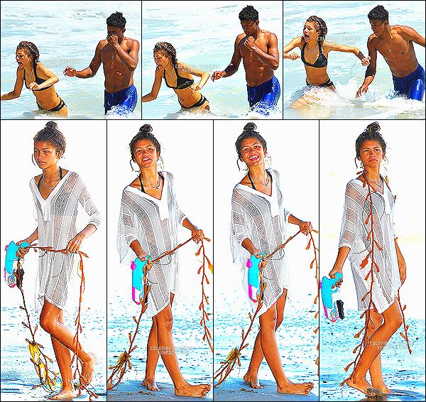 _ 06/07/14 : Zendaya Coleman a été aperçue à la plage de Malibu avec Trevor Jackson.-
