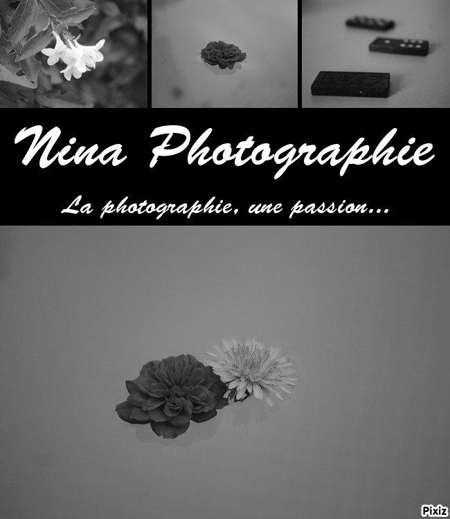 Nina Photographie ღ
