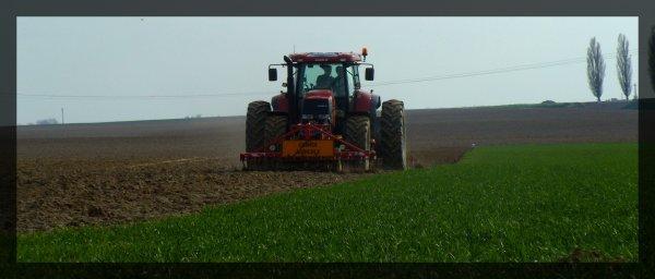 Préparation des terres a pomme de terres