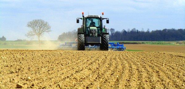 Préparation et plantation des pommes de terres.