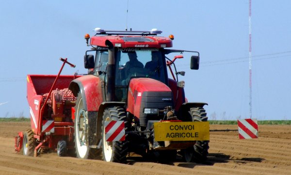 Préparation et plantation des terres a pomme de terre ...