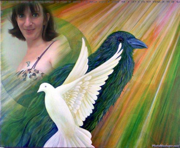 si jui un oiseau jirai jusqua toi
