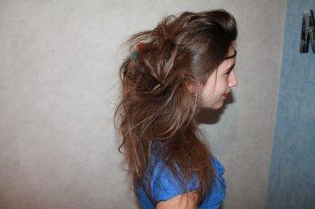 Aloysia perrout, ma cousine