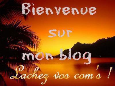 bienveneu sur mon blog