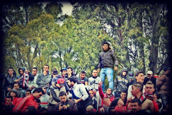 In Curva Mujahidin <3