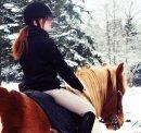 Photo de HorseAddiction