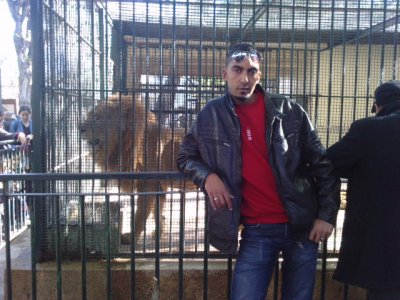 le  roi lion hihihi