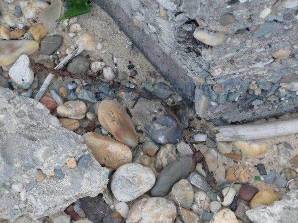Campagnes de détection au Cap Ferret partie 4