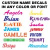One Word or Name Vinyl Decal Sticker in Any Color and Font