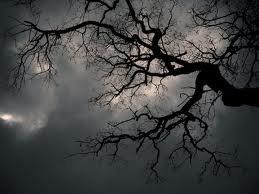tout sur le paranormal