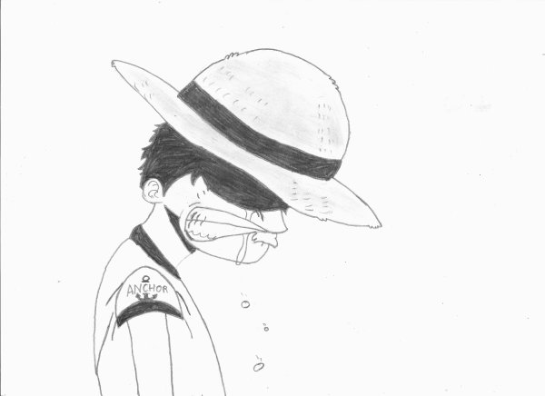Luffy Boy