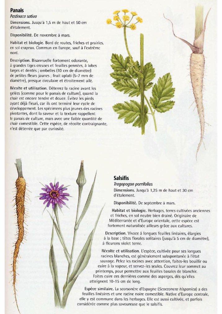 La nature comestible 10 et fin