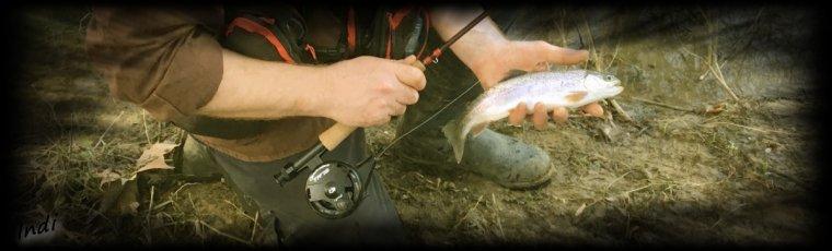 Journée pêche ...