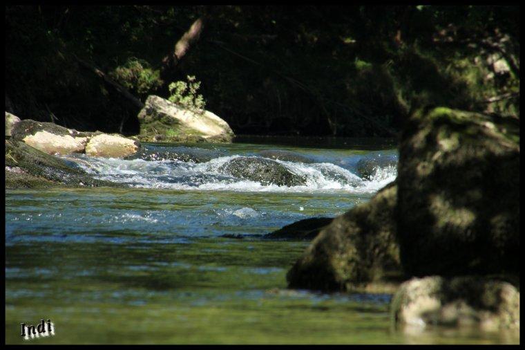 au bord de la rivière d'Ain (Jura)...