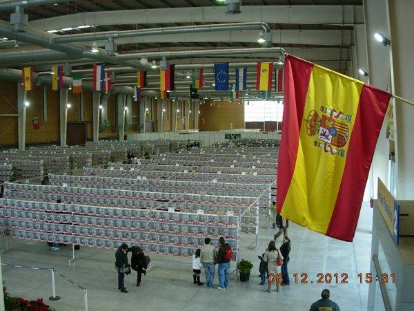 NACIONAL FOCDE Talavera de la Reina 2012