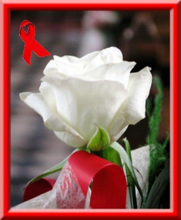 journée mondial contre le sida